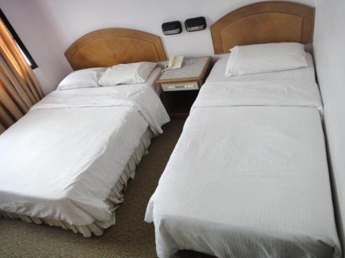 Hotel Rosa Passadena - фото 3