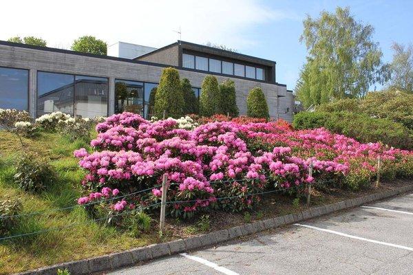 Solborg Folkeh Gskole Hostel - фото 7