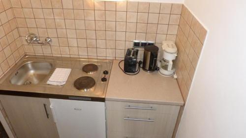 Hotel Apartment Rothensteiner - фото 11