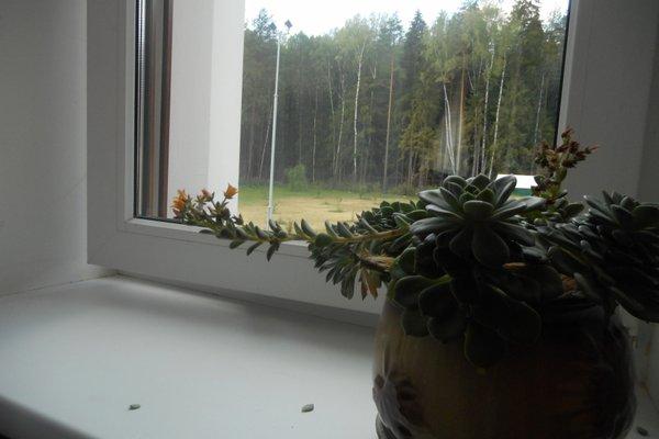 Гостиница Паломническая - фото 19