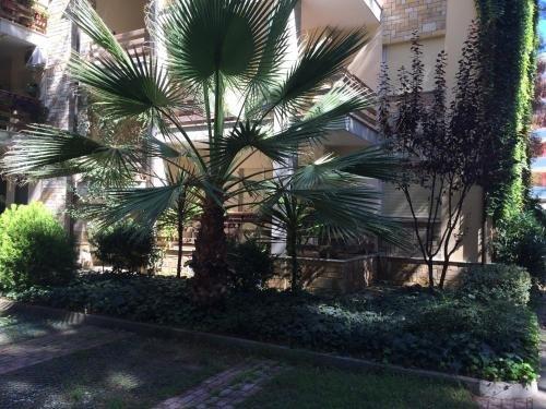 Apartment Eurocoli Rezidence - фото 19