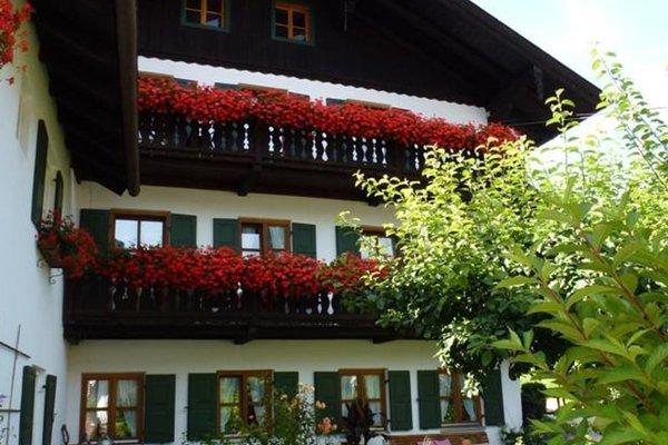 Guest house Sonnenhof - фото 16