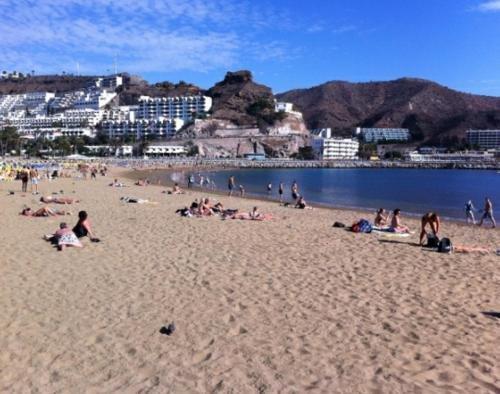 Monterrey Apartamentos - фото 20