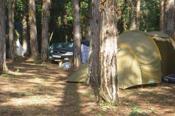 Sosnovy Ray Camping - фото 0