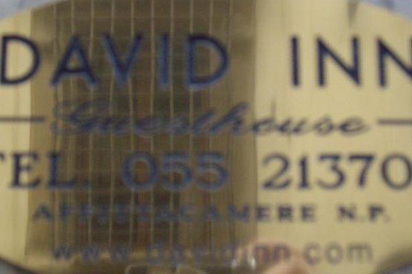 David Inn - фото 17