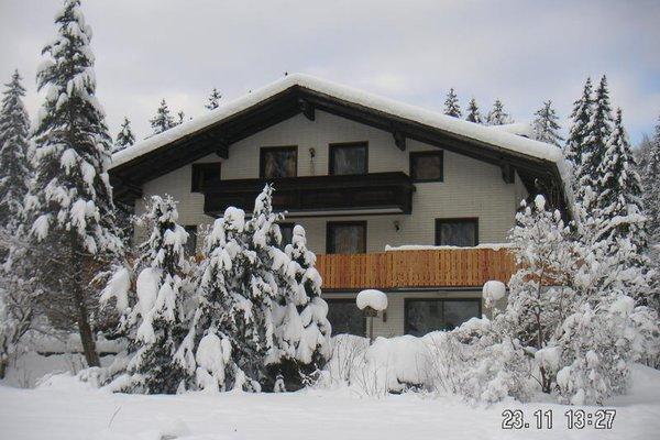 The Treehouse Backpacker Hotel - фото 22
