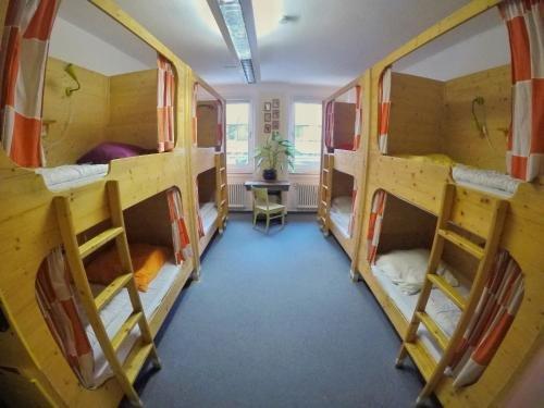 Black Sheep Hostel - фото 7