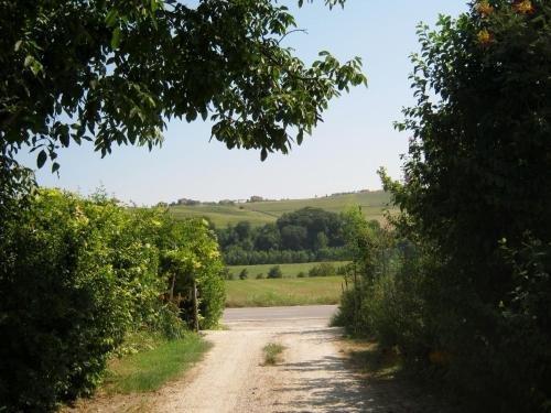 Agriturismo Le Vigne - фото 20