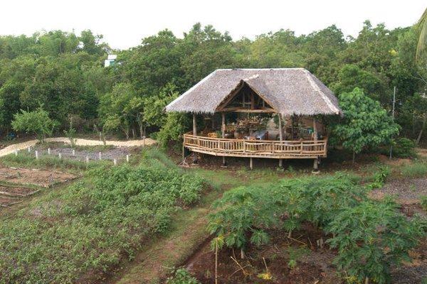 Bohol Coco Farm - фото 19