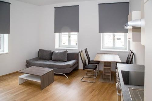 Debo Apartments Schonbrunner Strasse - фото 8