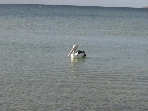 Lantauanan - The Lookout and Island Beach Haven House - фото 2