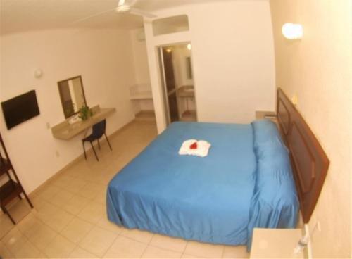 Hotel Rio Balsas - фото 1