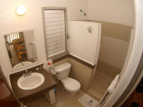 Hotel Rio Balsas - фото 9