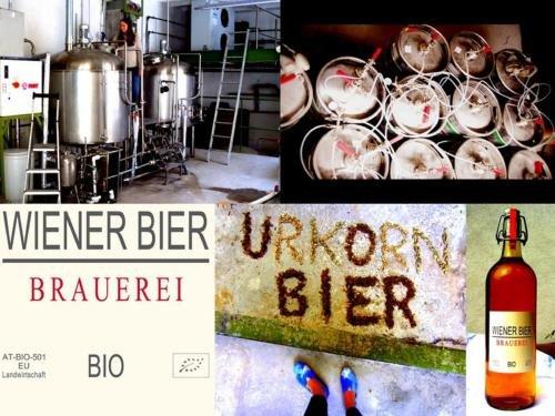 Wiener Gaste Zimmer - фото 19