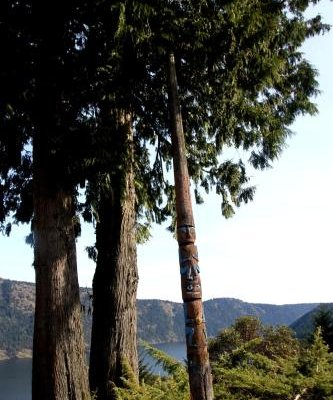 Moon Water Lodge - фото 18