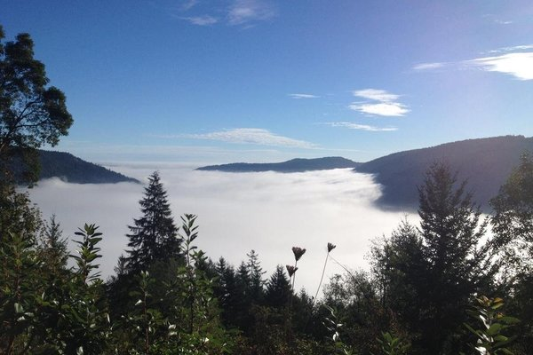 Moon Water Lodge - фото 19