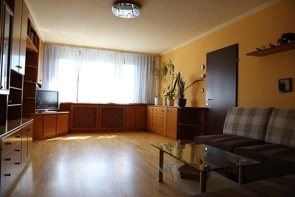 Apartment Vacha Linzerstrasse - фото 6