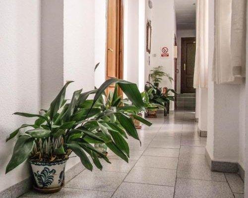 Pension Ciudad Navarro Ramos - фото 15