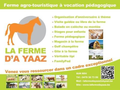 La ferme d'a Yaaz - фото 19