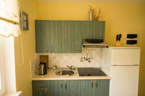 Viktoras Apartments - фото 13