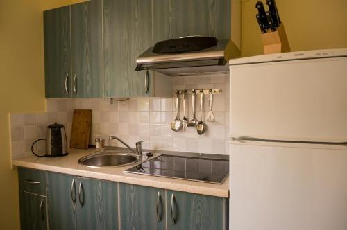 Viktoras Apartments - фото 15