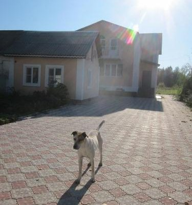 Дом Отдыха на Ясной Поляне - фото 4