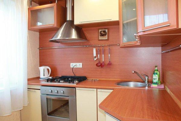 Podushka apartment at pushkina 7 - фото 2