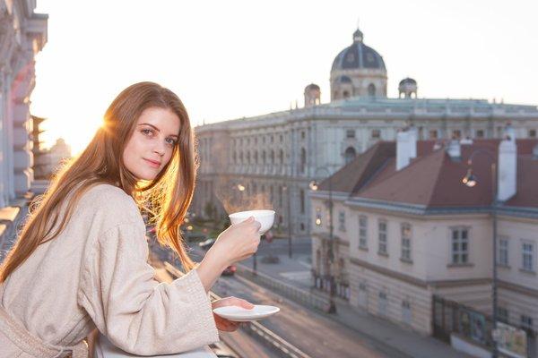 Hotel Sans Souci Wien - фото 23