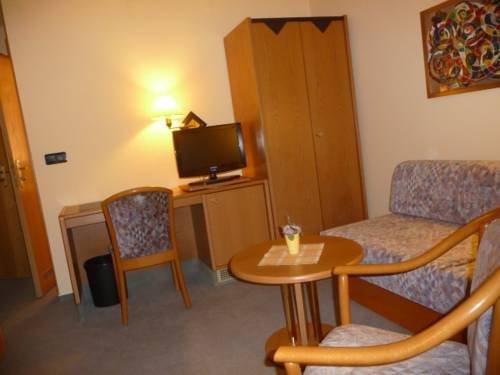 Hotel Bruckenschanke - фото 5