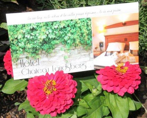 Hotel & Restaurant Chateau Landsberg & Spa - фото 20
