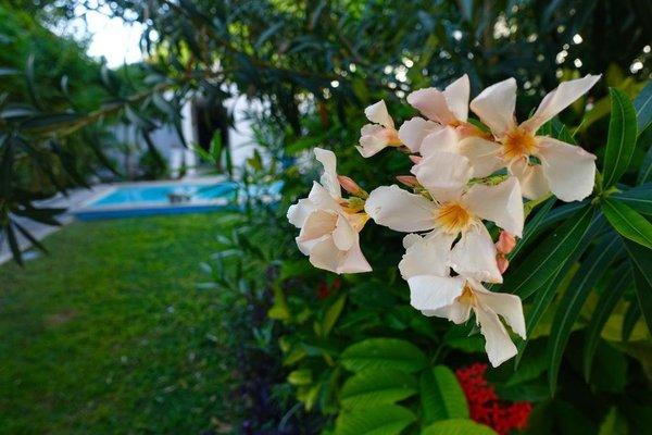 Hotel Aries y Libra - фото 10
