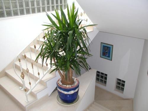 Adriatic Apartment Neum - фото 8