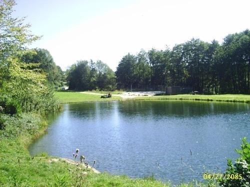 Ferienhof Guglhupf - фото 8