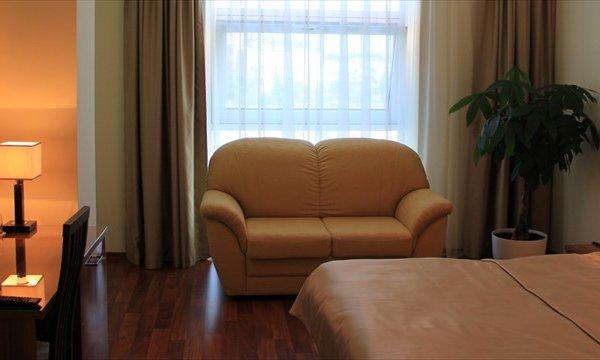 Отель Метрополис - фото 4
