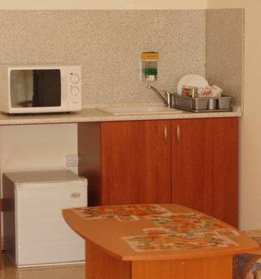 Hotel Holiday Rodopi - фото 9