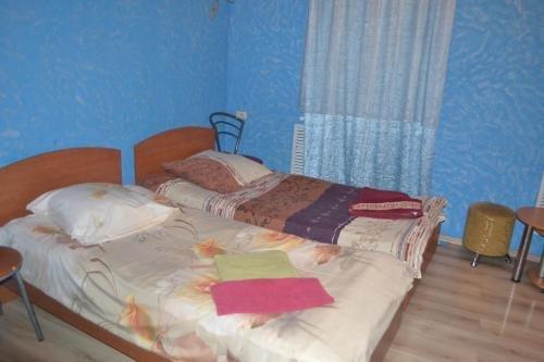 Vesyoly Solovey Hotel - фото 5