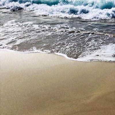 Palm Beach - фото 16