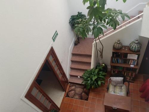 Casa Maria Elena - фото 6