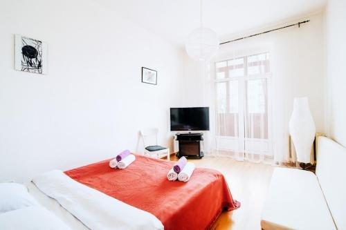 Economy Apartment Center - фото 50