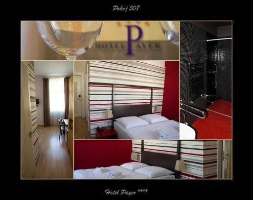 Hotel Payer II - фото 6