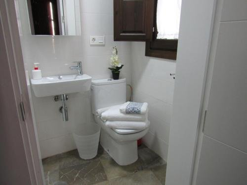 Apartamentos Iliberis - фото 13