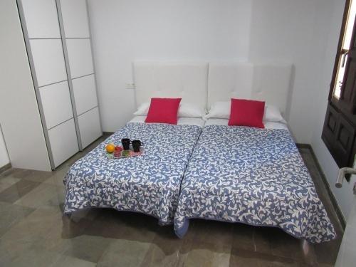 Apartamentos Iliberis - фото 8