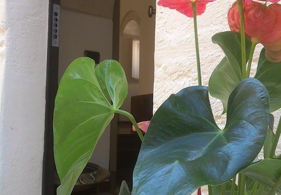 Alla dimora di Chiara Suite and Rooms - фото 21