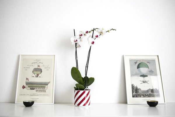 Lovely Sempione Apartment - фото 8