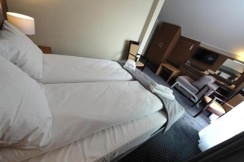 Hotel Rudnik - фото 1