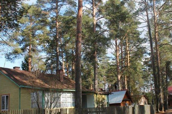 Хаус Сокол 14 - фото 16