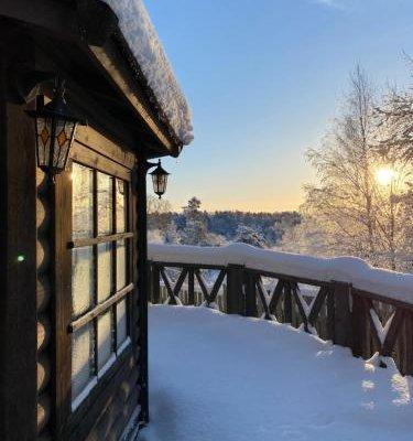 Cottages in Chernichnoe - фото 10