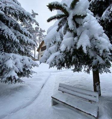 Cottages in Chernichnoe - фото 17