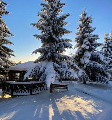 Cottages in Chernichnoe - фото 18