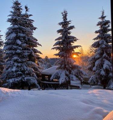 Cottages in Chernichnoe - фото 19